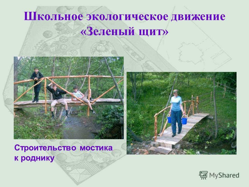 Школьное экологическое движение «Зеленый щит» Строительство мостика к роднику