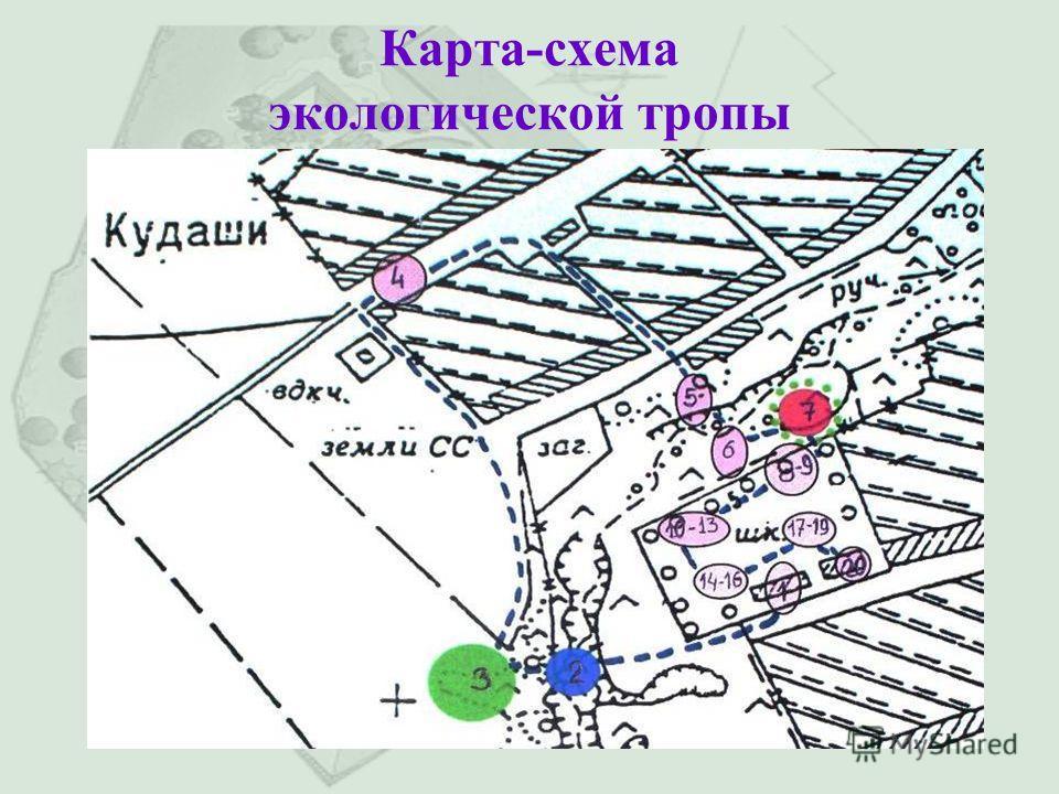 Карта-схема экологической тропы
