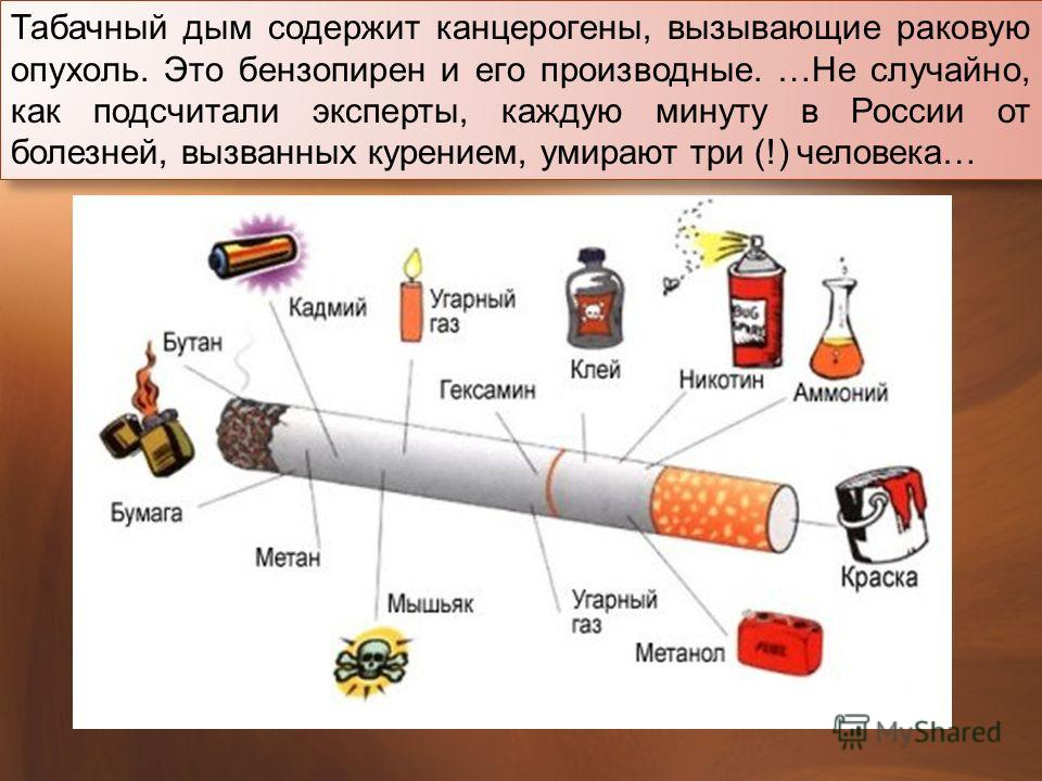 Табачный дым содержит канцерогены, вызывающие раковую опухоль. Это бензопирен и его производные. … Не случайно, как подсчитали эксперты, каждую минуту в России от болезней, вызванных курением, умирают три (!) человека …