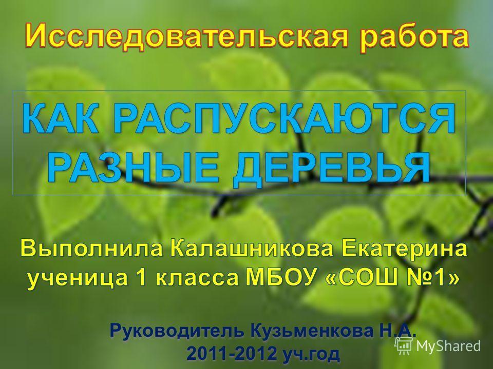 Руководитель Кузьменкова Н.А. 2011-2012 уч.год