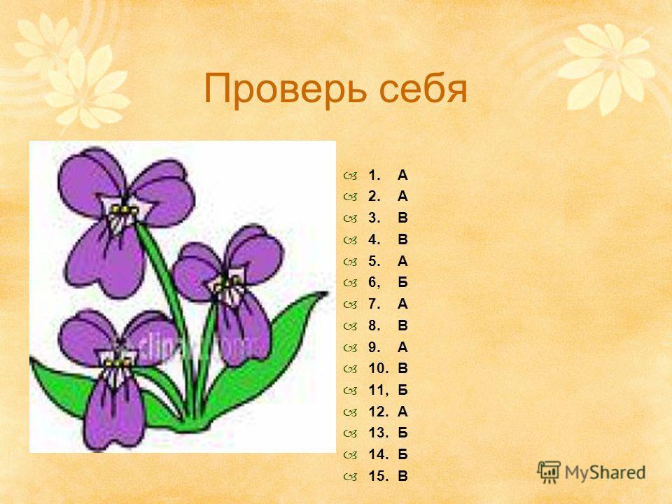 Проверь себя 1. А 2. А 3. В 4. В 5. А 6, Б 7. А 8. В 9. А 10. В 11, Б 12. А 13. Б 14. Б 15. В