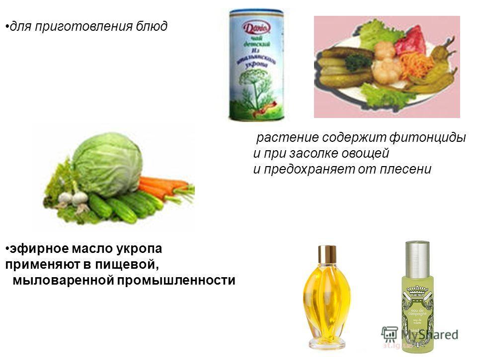 для приготовления блюд растение содержит фитонциды и при засолке овощей и предохраняет от плесени эфирное масло укропа применяют в пищевой, мыловаренной промышленности