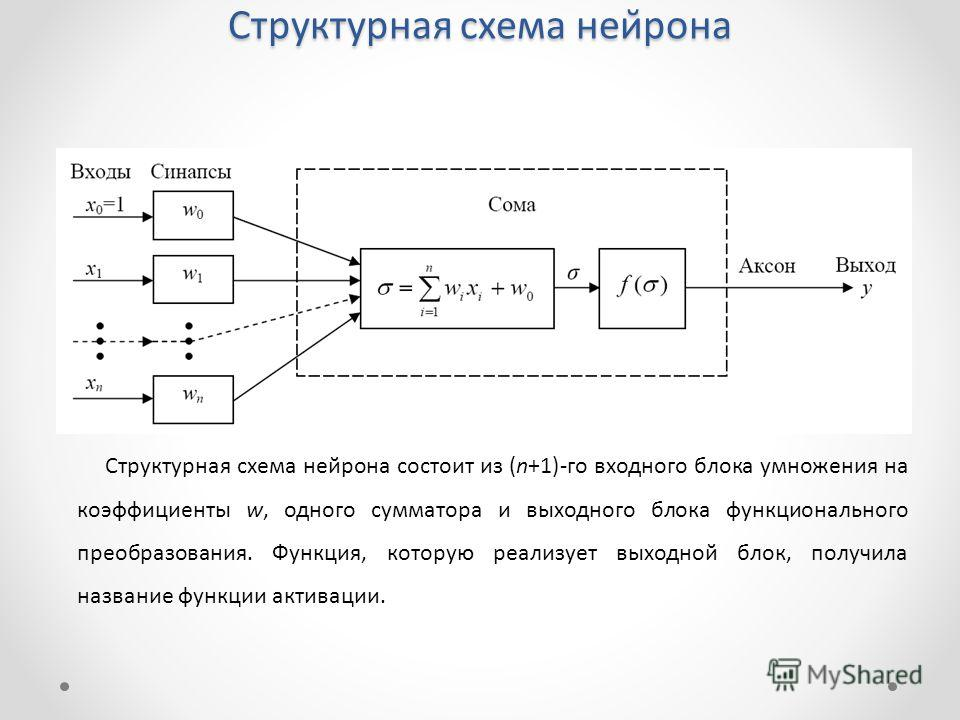 Структурная схема нейрона