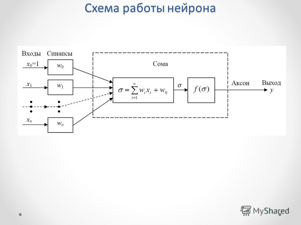 Схема работы нейрона