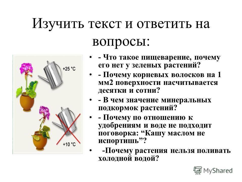 Изучить текст и ответить на вопросы: - Что такое пищеварение, почему его нет у зеленых растений? - Почему корневых волосков на 1 мм2 поверхности насчитывается десятки и сотни? - В чем значение минеральных подкормок растений? - Почему по отношению к у
