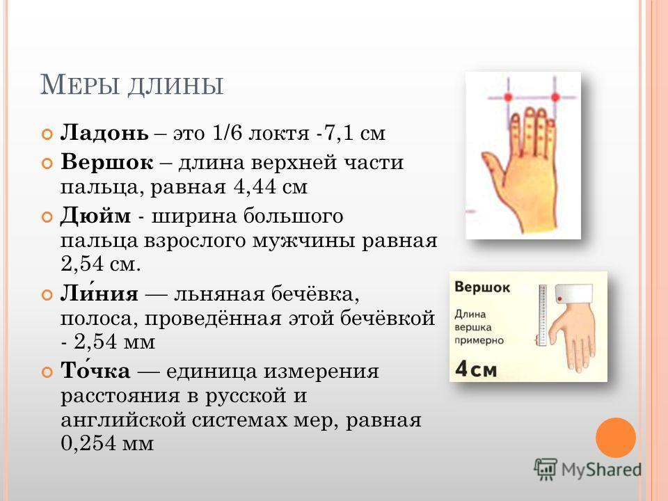 М ЕРЫ ДЛИНЫ Ладонь – это 1/6 локтя -7,1 см Вершок – длина верхней части пальца, равная 4,44 см Дюйм - ширина большого пальца взрослого мужчины равная 2,54 см. Линия льняная бечёвка, полоса, проведённая этой бечёвкой - 2,54 мм Точка единица измерения