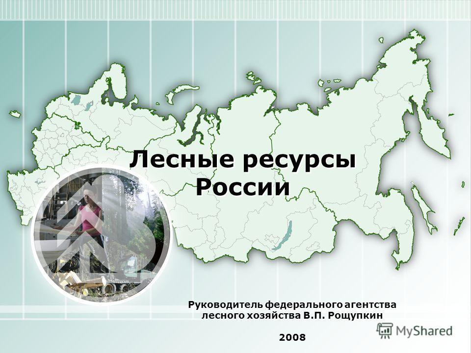 Лесные ресурсы России Руководитель федерального агентства лесного хозяйства В.П. Рощупкин 2008