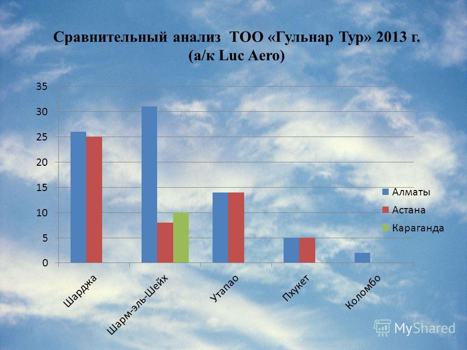 Сравнительный анализ ТОО «Гульнар Тур» 2013 г. (а/к Luc Aero)