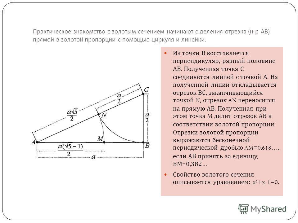 Практическое знакомство с золотым сечением начинают с деления отрезка ( н - р АВ ) прямой в золотой пропорции с помощью циркуля и линейки. Из точки В восставляется перпендикуляр, равный половине АВ. Полученная точка С соединяется линией с точкой А. Н