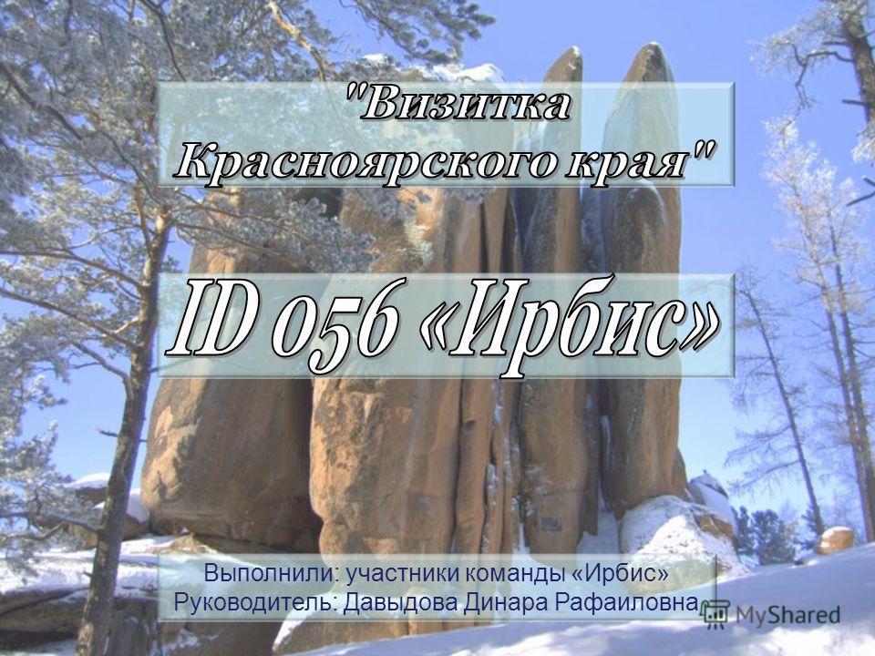 Выполнили: участники команды «Ирбис» Руководитель: Давыдова Динара Рафаиловна