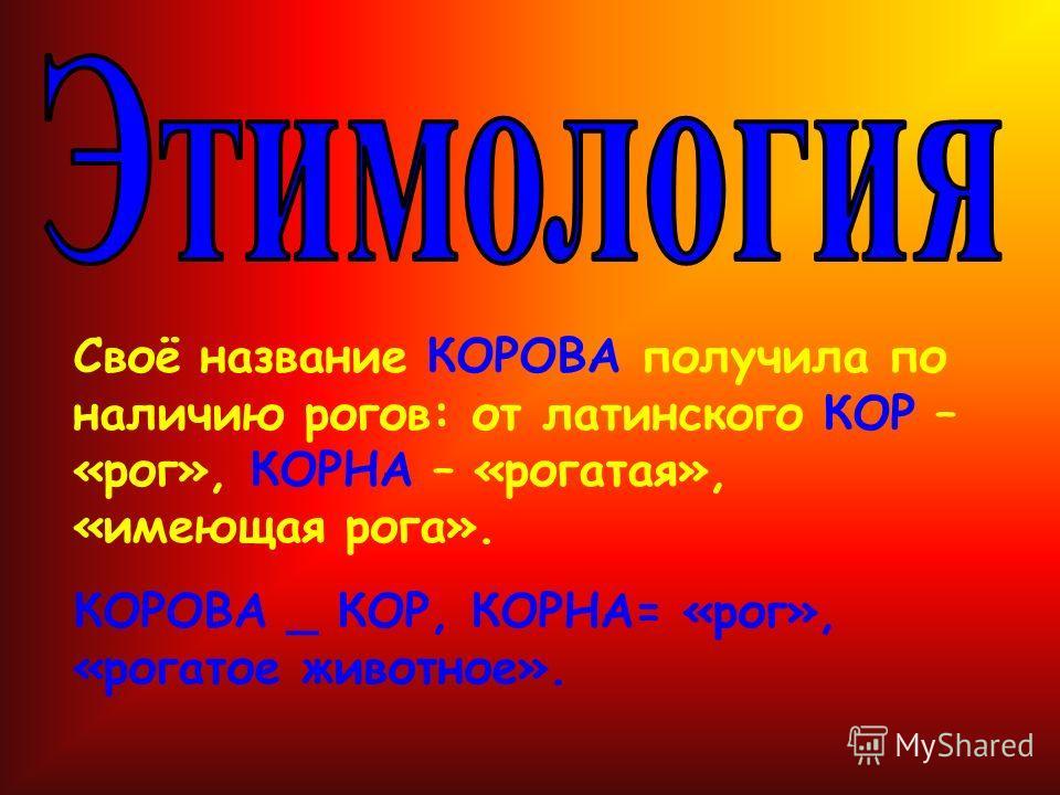 Своё название КОРОВА получила по наличию рогов: от латинского КОР – «рог», КОРНА – «рогатая», «имеющая рога». КОРОВА _ КОР, КОРНА= «рог», «рогатое животное».