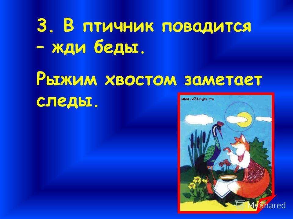 3. В птичник повадится – жди беды. Рыжим хвостом заметает следы.