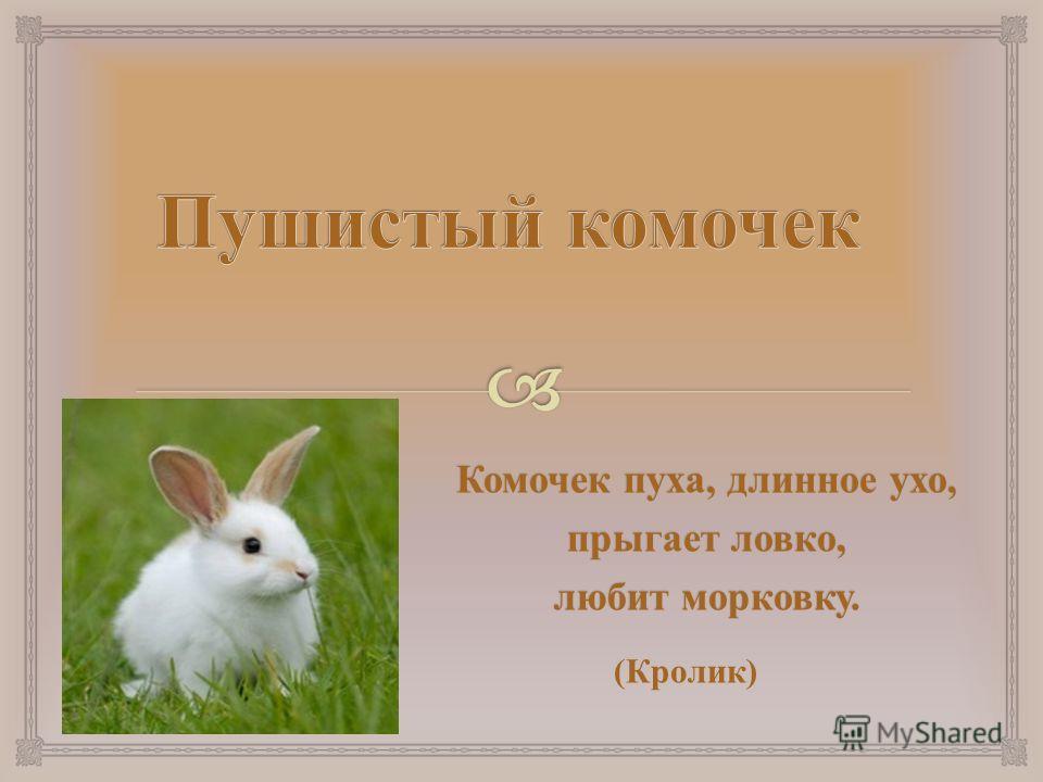Комочек пуха, длинное ухо, прыгает ловко, любит морковку. ( Кролик )