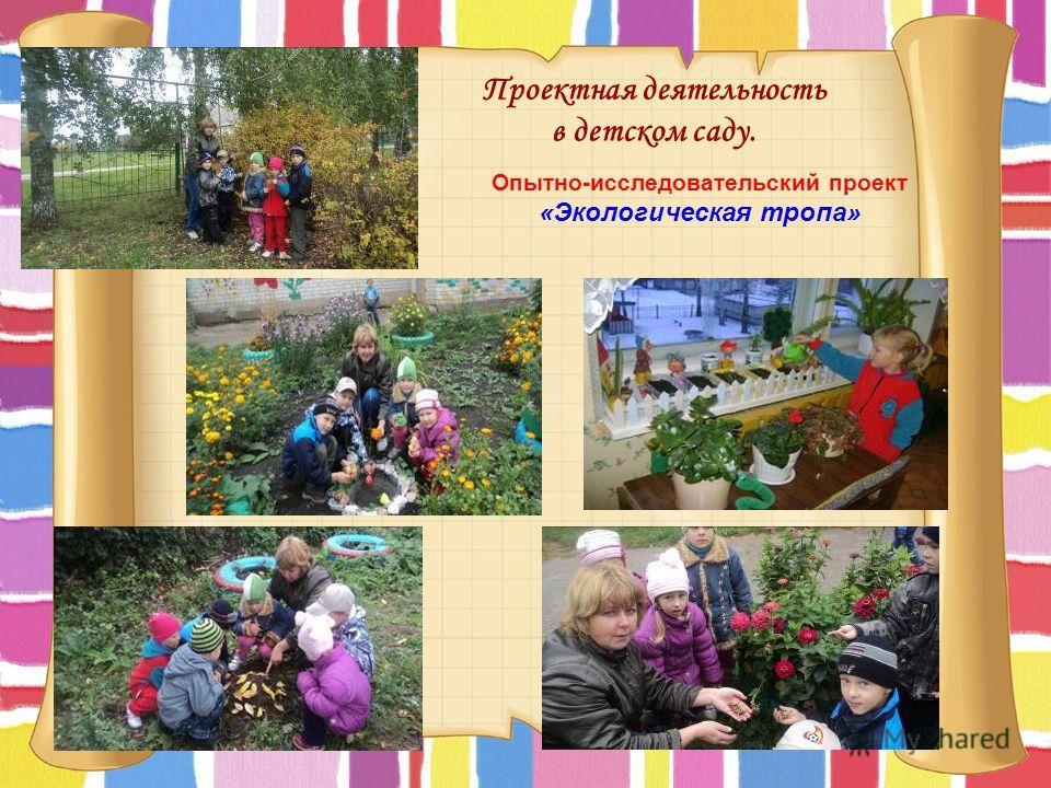 Проектная деятельность в детском саду. Опытно-исследовательский проект «Экологическая тропа»