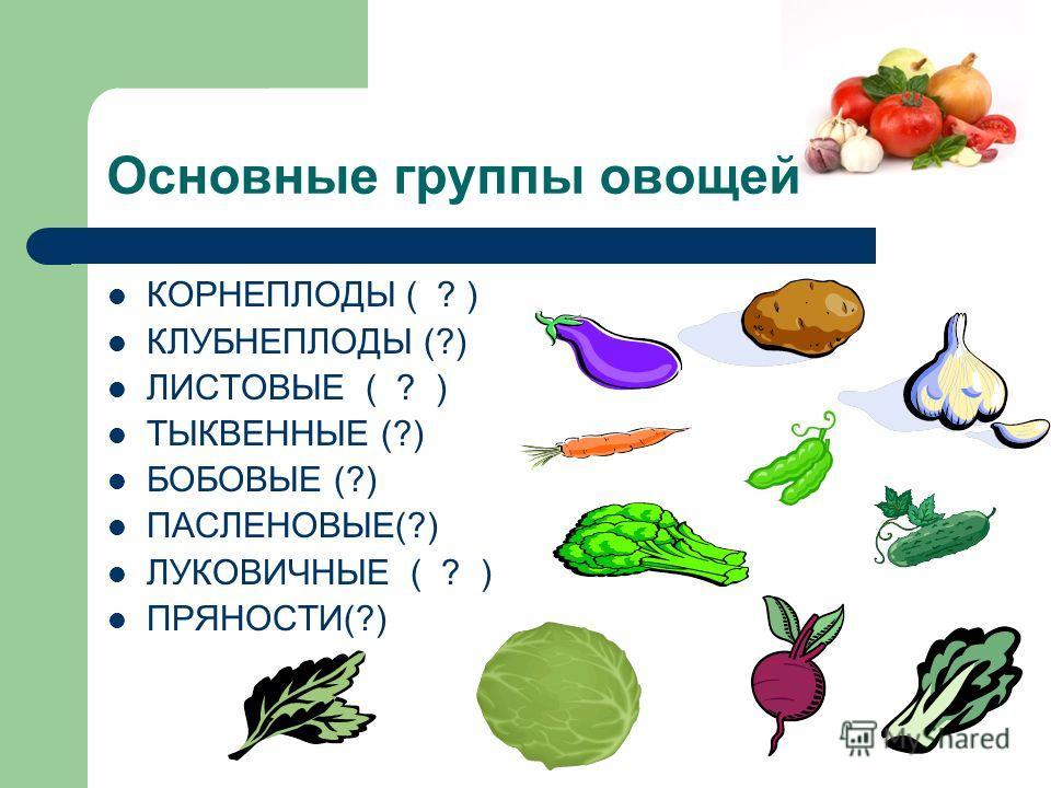 Основные группы овощей КОРНЕПЛОДЫ ( ? ) КЛУБНЕПЛОДЫ (?) ЛИСТОВЫЕ ( ? ) ТЫКВЕННЫЕ (?) БОБОВЫЕ (?) ПАСЛЕНОВЫЕ(?) ЛУКОВИЧНЫЕ ( ? ) ПРЯНОСТИ(?)
