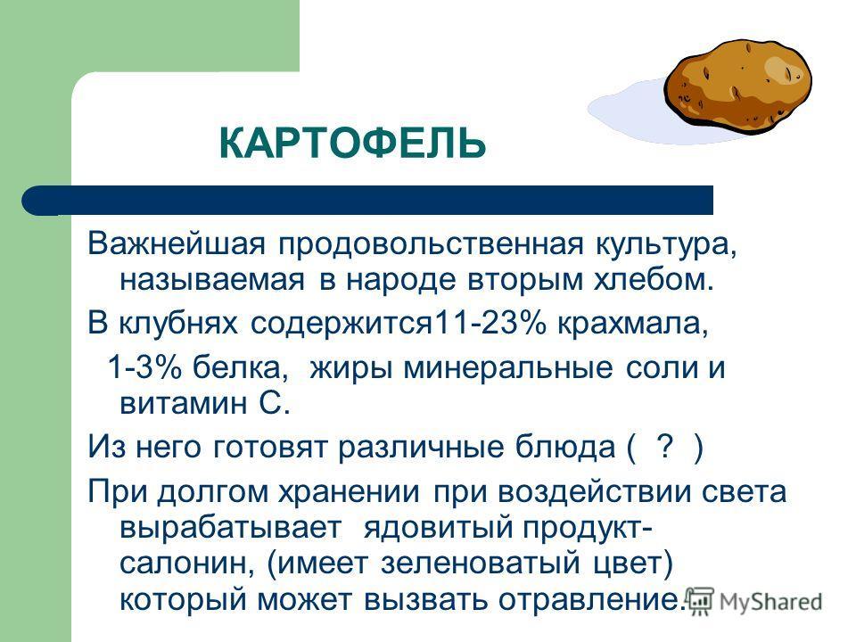 КАРТОФЕЛЬ Важнейшая продовольственная культура, называемая в народе вторым хлебом. В клубнях содержится11-23% крахмала, 1-3% белка, жиры минеральные соли и витамин С. Из него готовят различные блюда ( ? ) При долгом хранении при воздействии света выр