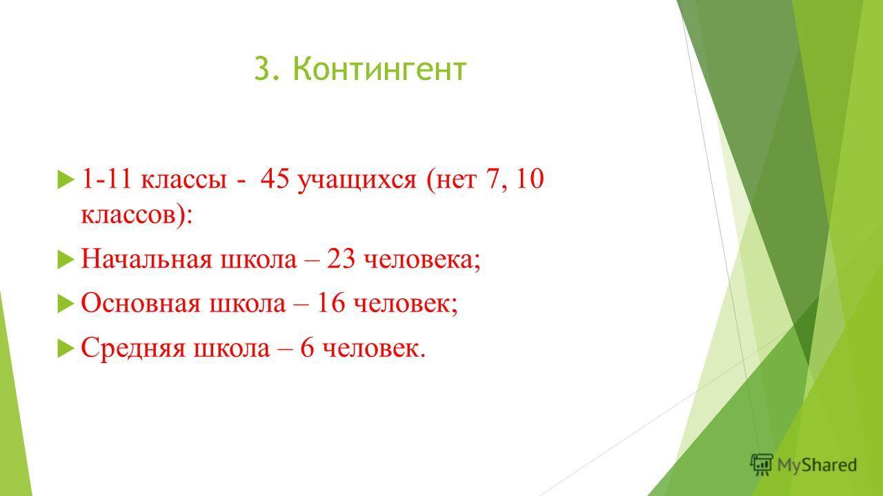 3. Контингент 1-11 классы - 45 учащихся (нет 7, 10 классов): Начальная школа – 23 человека; Основная школа – 16 человек; Средняя школа – 6 человек.