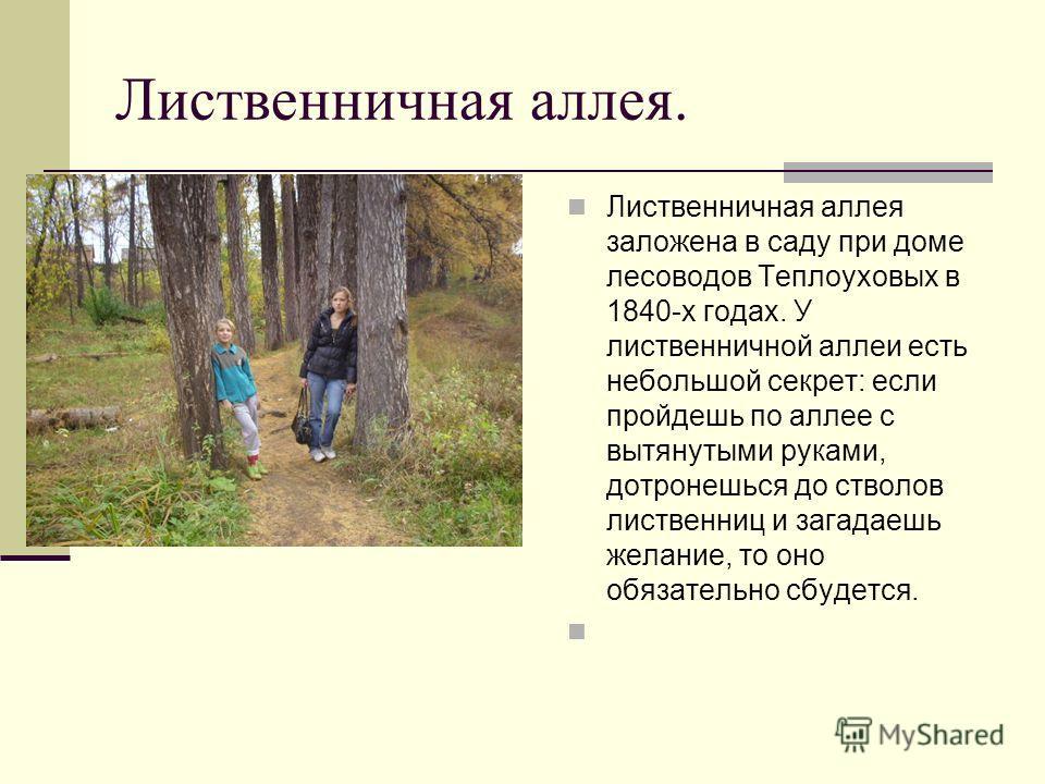 Лиственничная аллея. Лиственничная аллея заложена в саду при доме лесоводов Теплоуховых в 1840-х годах. У лиственничной аллеи есть небольшой секрет: если пройдешь по аллее с вытянутыми руками, дотронешься до стволов лиственниц и загадаешь желание, то