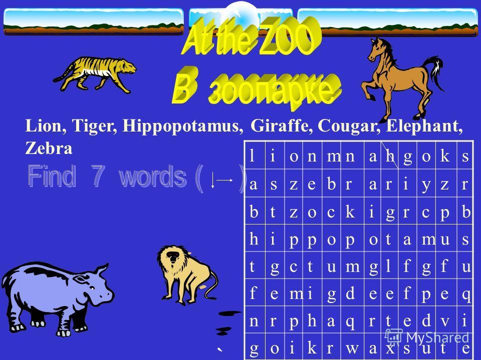 Lion, Tiger, Hippopotamus, Giraffe, Cougar, Elephant, Zebra lionmnahgoks aszebrariyzr btzockigrcpb hippopotamus tgctumglfgfu femigdeefpeq nrphaqrtedvi goikrwaxsute