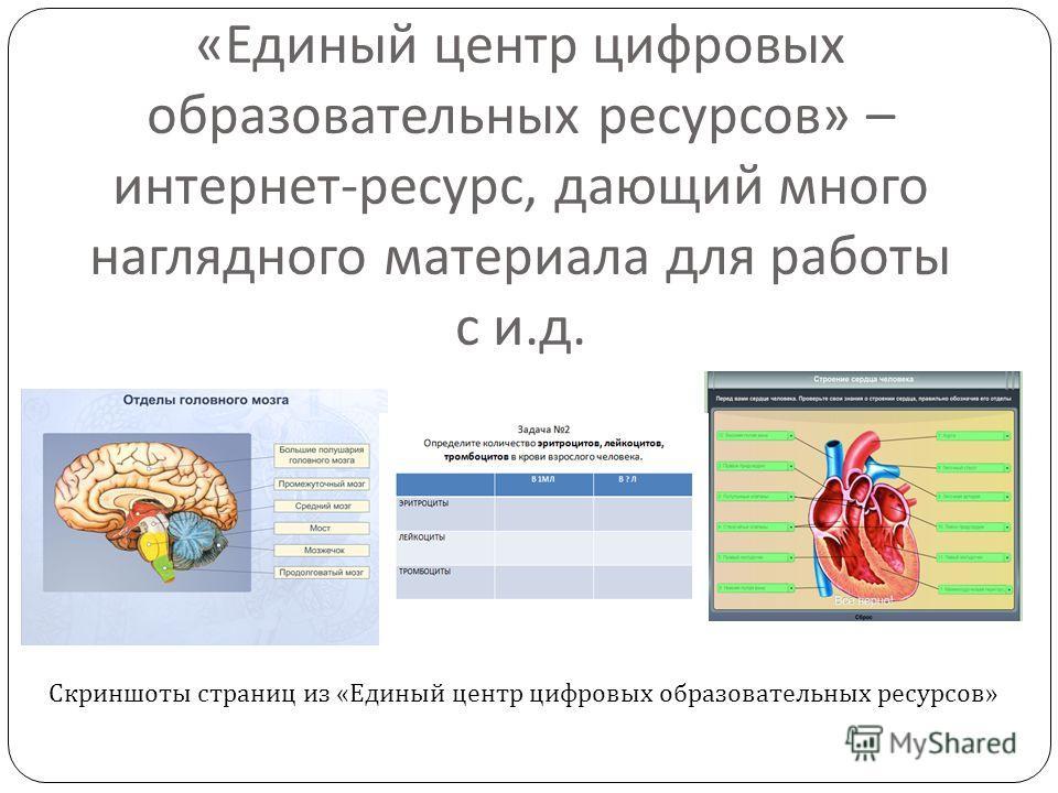 « Единый центр цифровых образовательных ресурсов » – интернет - ресурс, дающий много наглядного материала для работы с и. д. Скриншоты страниц из «Единый центр цифровых образовательных ресурсов»