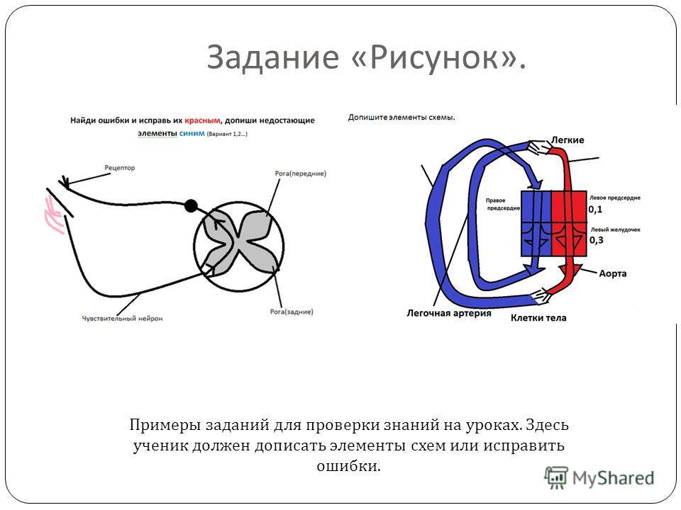 Задание « Рисунок ». Примеры заданий для проверки знаний на уроках. Здесь ученик должен дописать элементы схем или исправить ошибки.