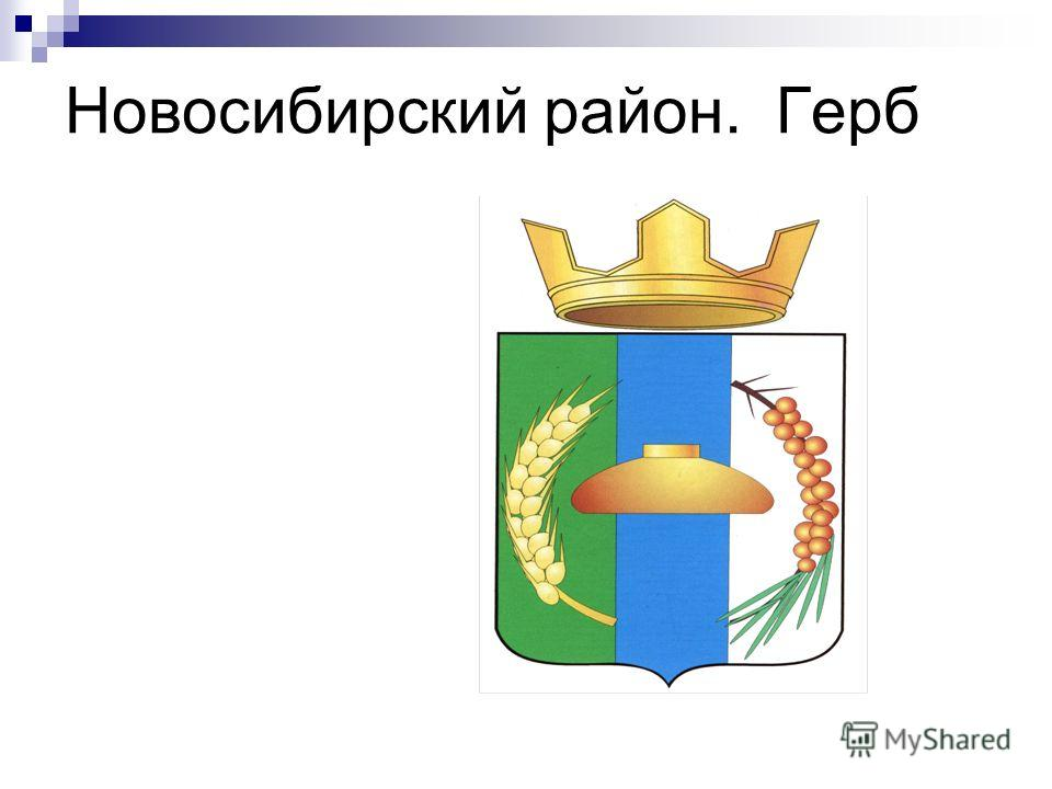 Новосибирский район. Герб