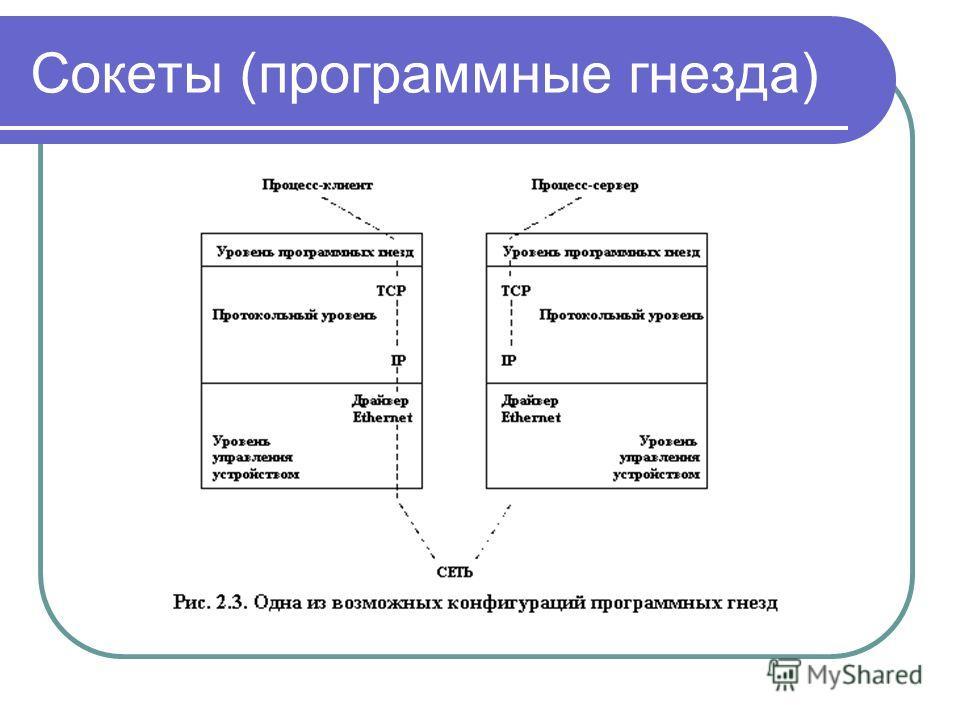 Сокеты (программные гнезда)