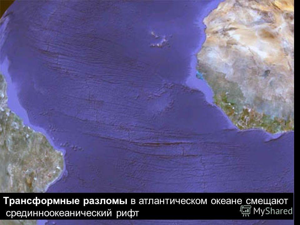 геологи-лекция-11-2013 33 Трансформные разломы в атлантическом океане смещают срединноокеанический рифт