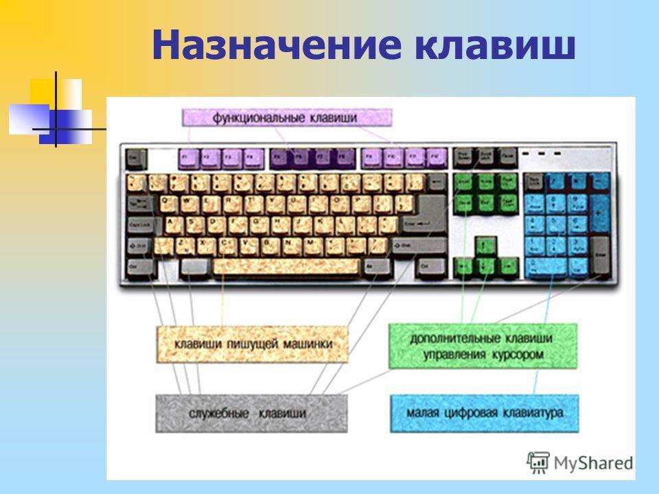 Назначение клавиш слайд 7 мышь мышь
