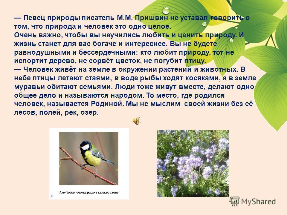Судьба природы – наша судьба МБОУ «Краснокутская ООШ» Выполнила учитель начальных классов: Лушпина Рита Николаевна