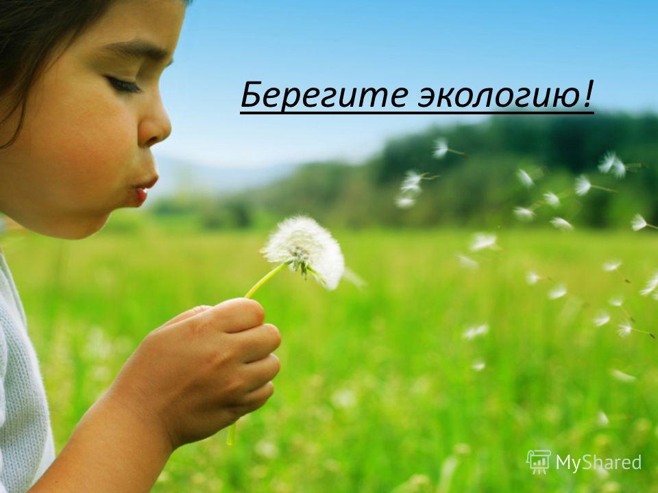 Берегите экологию!