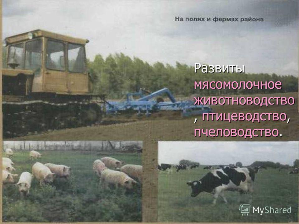 Развиты мясомолочное животноводство, птицеводство, пчеловодство.
