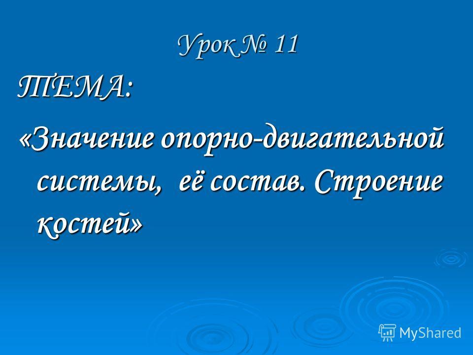 Урок 11 ТЕМА: «Значение опорно-двигательной системы, её состав. Строение костей»