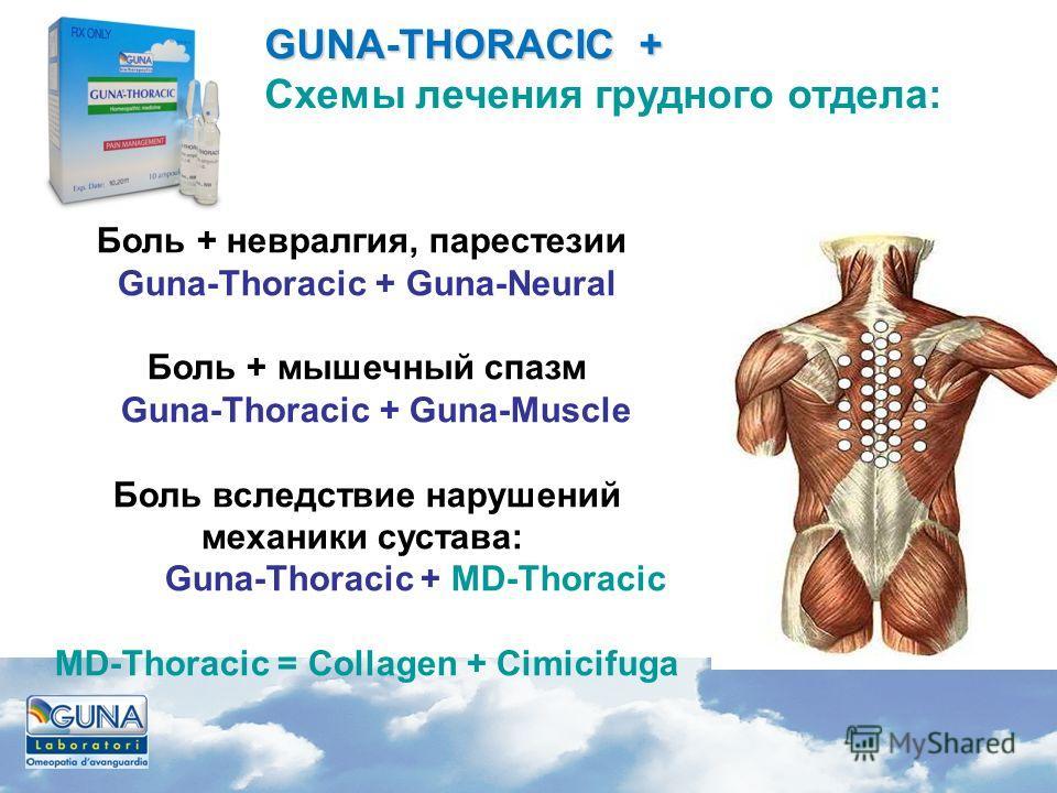 Боль + невралгия, парестезии Guna-Thoracic + Guna-Neural Боль + мышечный спазм Guna-Thoracic + Guna-Muscle Боль вследствие нарушений механики сустава: Guna-Thoracic + MD-Thoracic MD-Thoracic = Сollagen + Cimicifuga GUNA-THORACIC + GUNA-THORACIC + Схе