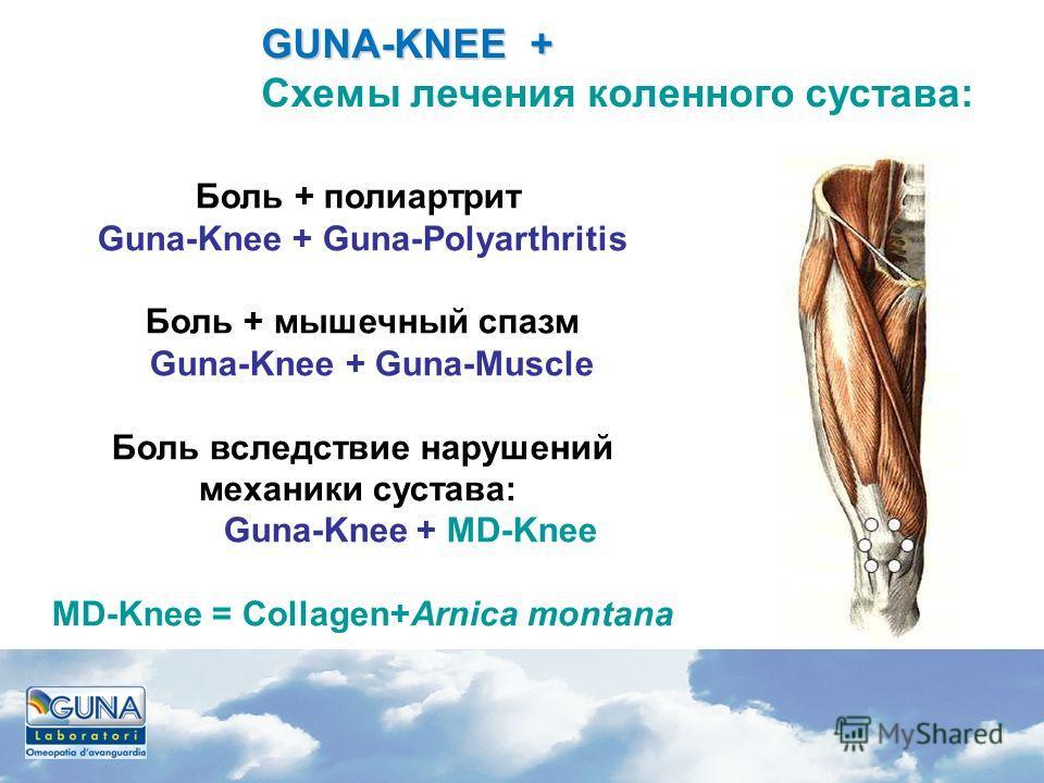 Боль + полиартрит Guna-Knee + Guna-Polyarthritis Боль + мышечный спазм Guna-Knee + Guna-Muscle Боль вследствие нарушений механики сустава: Guna-Knee + MD-Knee MD-Knee = Сollagen+Arnica montana GUNA-KNEE + GUNA-KNEE + Схемы лечения коленного сустава: