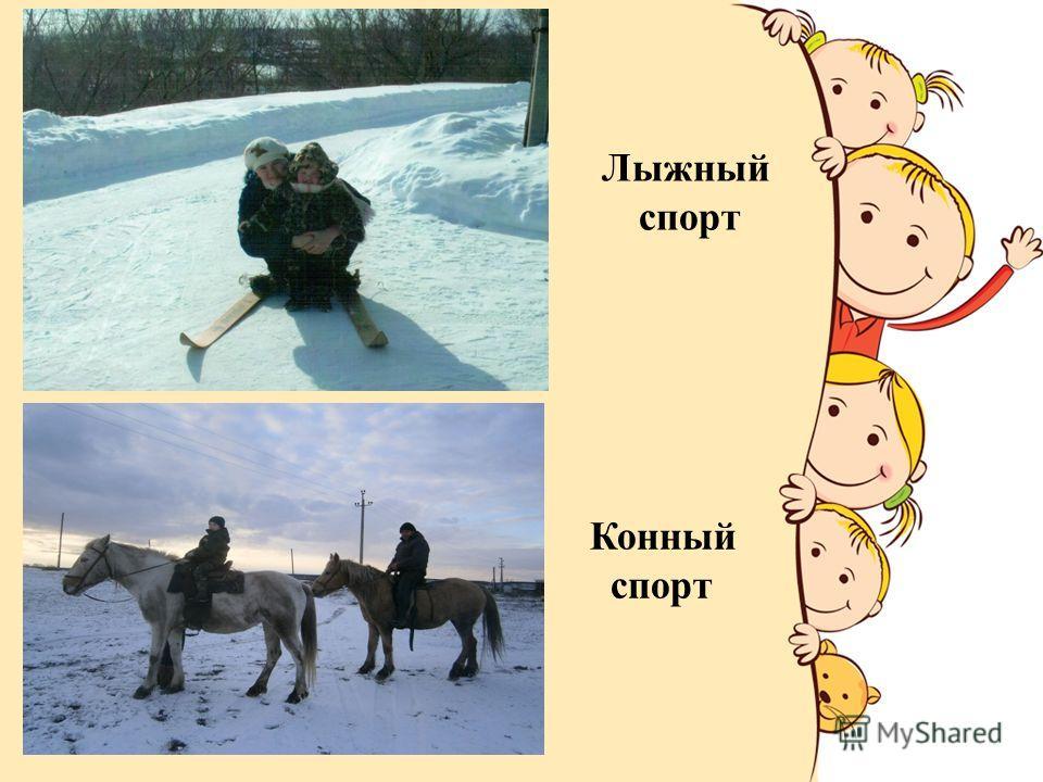 Лыжный спорт Конный спорт