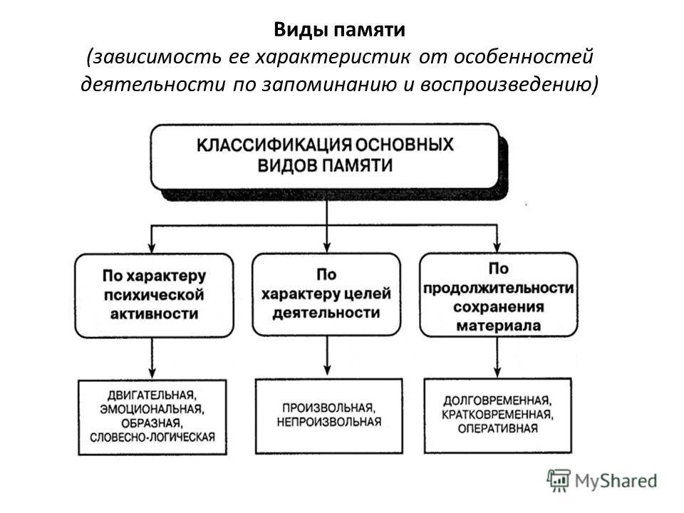 Виды памяти (зависимость ее характеристик от особенностей деятельности по запоминанию и воспроизведению)