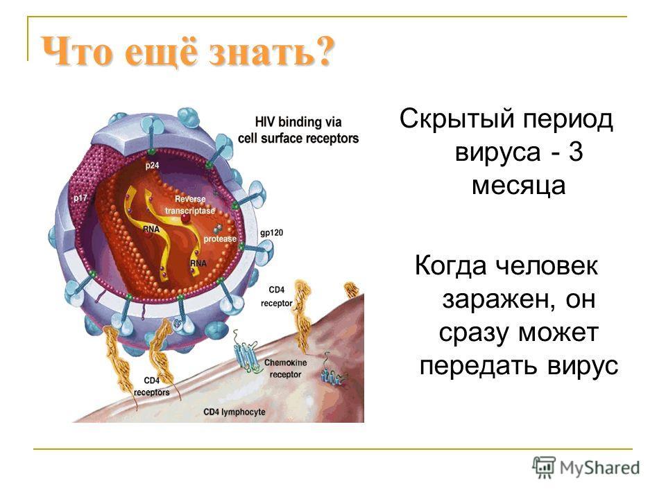 Что ещё знать? Скрытый период вируса - 3 месяца Когда человек заражен, он сразу может передать вирус
