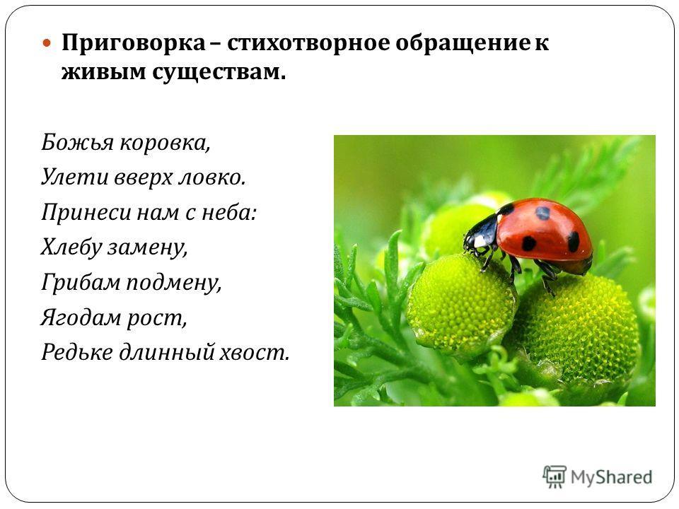 Закличка – обращение в стихотворной форме к различным явлениям природы. Солнышко, покажись ! Красное, снарядись ! Чтобы год от года Давала нам погода : Теплое летечко, Грибы в берестечко, Ягоды в лукошко, Зеленого горошка.