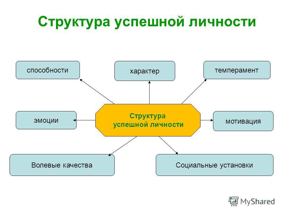 Структура успешной личности Структура успешной личности способноститемперамент характер Волевые качества эмоции мотивация Социальные установки