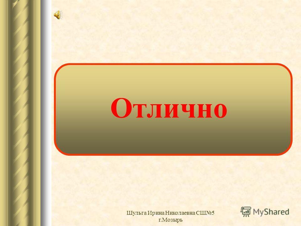 Очень хорошо Шульга Ирина Николаевна СШ5 г.Мозырь