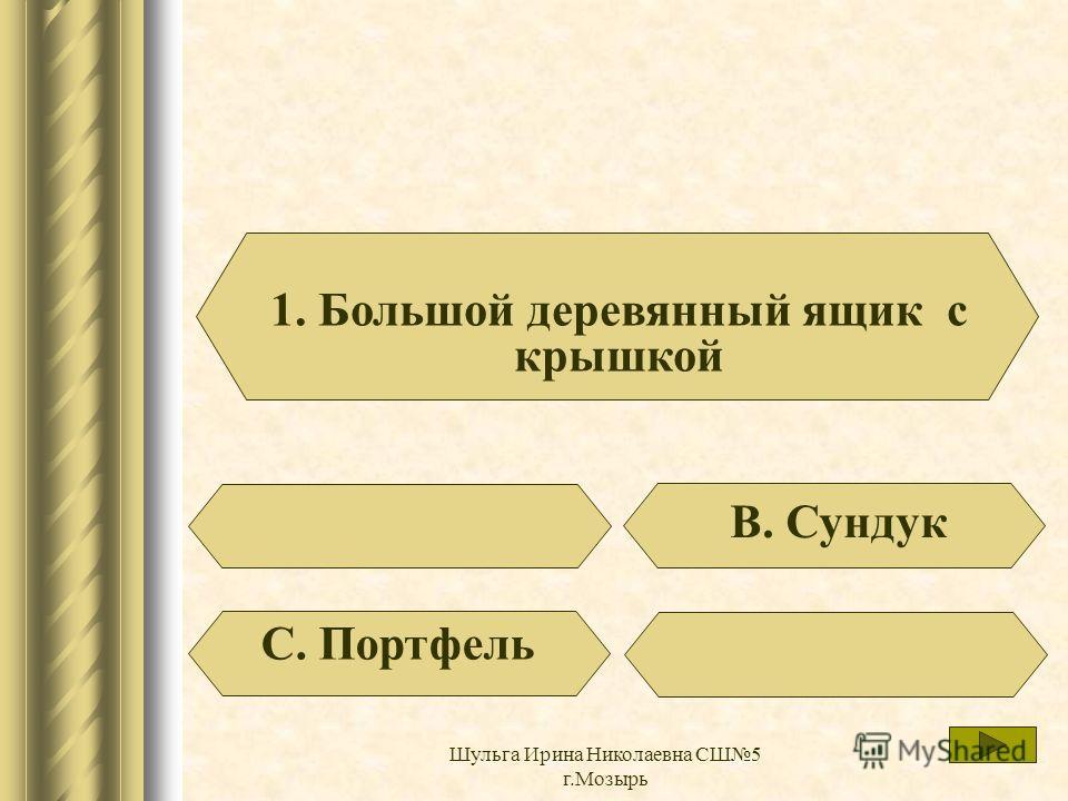 Великолепно Шульга Ирина Николаевна СШ5 г.Мозырь