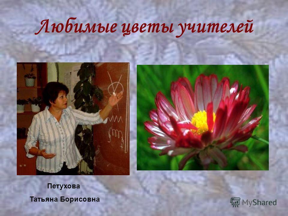 Любимые цветы учителей Петухова Татьяна Борисовна