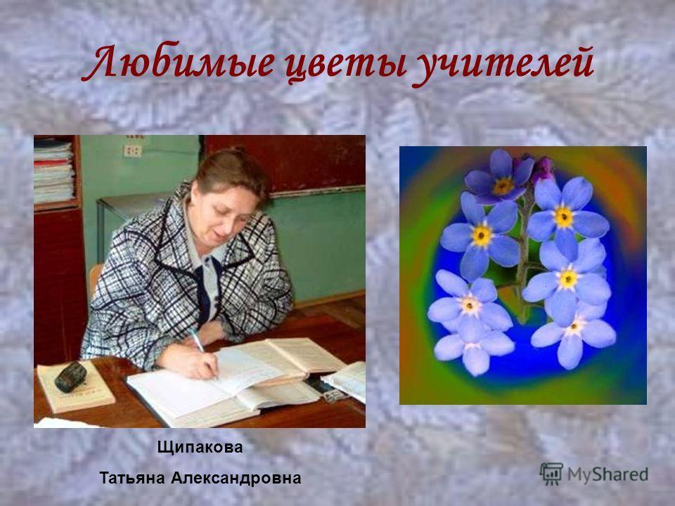 Любимые цветы учителей Щипакова Татьяна Александровна