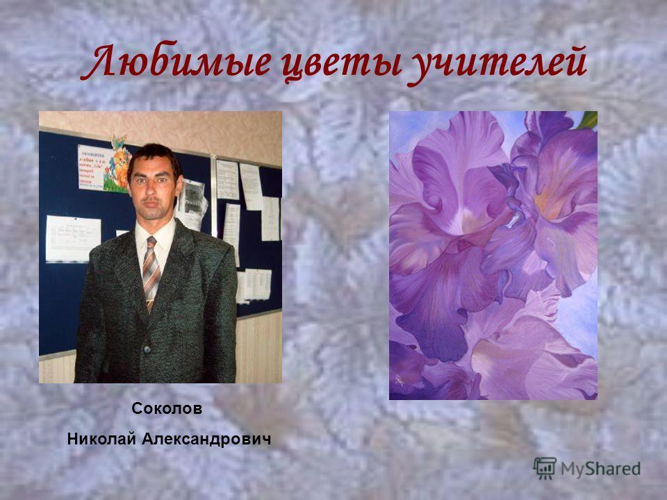 Любимые цветы учителей Соколов Николай Александрович