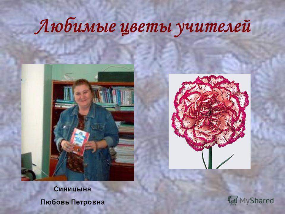 Любимые цветы учителей Синицына Любовь Петровна