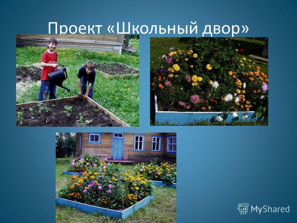 Проект «Школьный двор»
