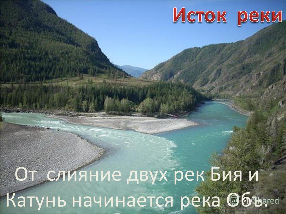 От слияние двух рек Бия и Катунь начинается река Объ.