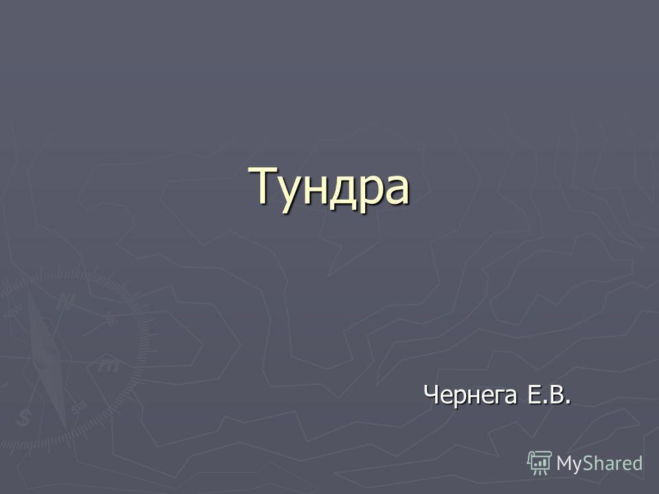 Тундра Чернега Е.В.
