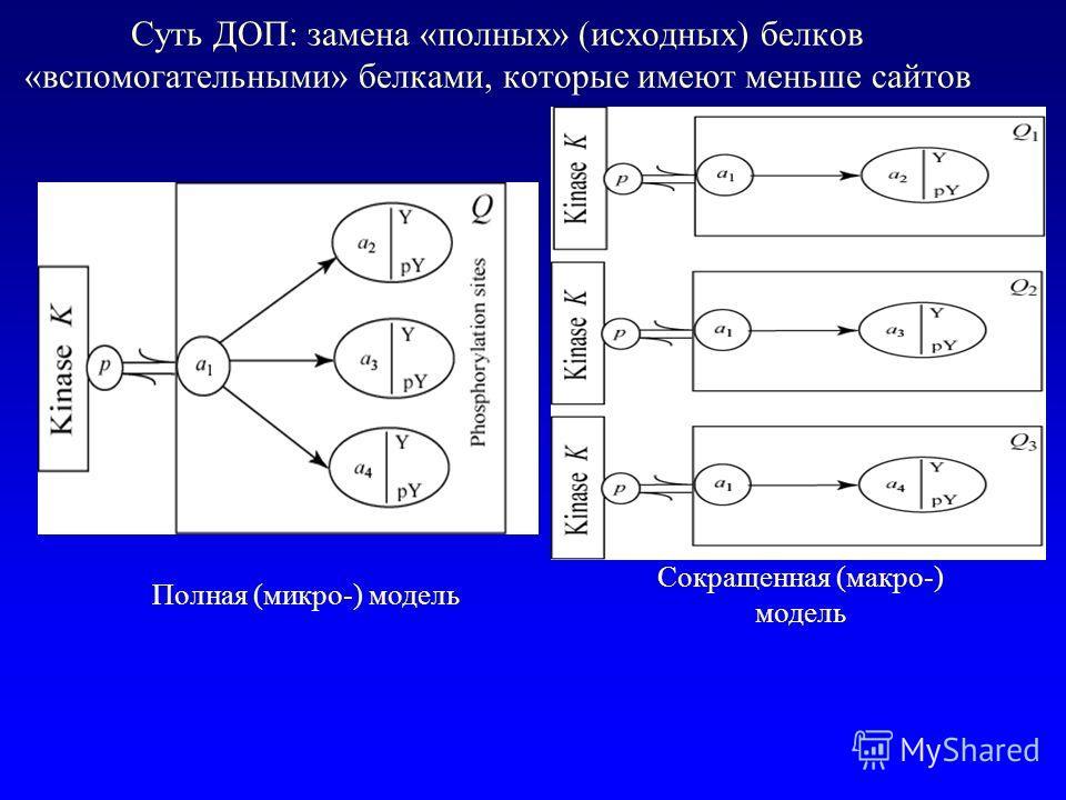 Суть ДОП: замена «полных» (исходных) белков «вспомогательными» белками, которые имеют меньше сайтов Полная (микро-) модель Сокращенная (макро-) модель